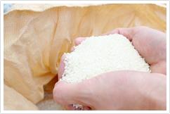 徹底した米へのこだわり